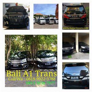 Sewa Mobil Alphard Untuk Kegiatan Wedding di Bali