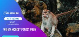 Wisata Monkey Forest Ubud